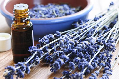 lavender sprigs, lavender essential oil, lavender blossoms in a bowl